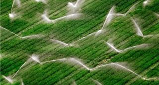 Tưới tiêu và nông nghiệp